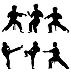 Young karate boys silhouettes vector