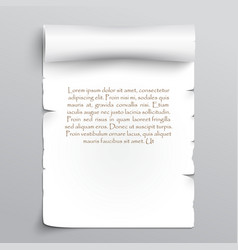 White sheet of papyrus vector image vector image