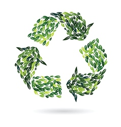 recycling sign from leaves vector image vector image
