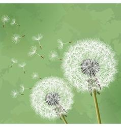 Vintage floral background with dandelion vector image