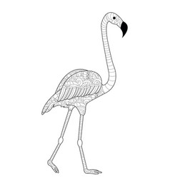 Flamingos coloring for adults vector