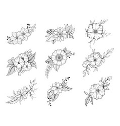hand drawn doodle floral element collection vector image