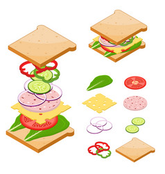 Ingredients for sandwiches fast food vector