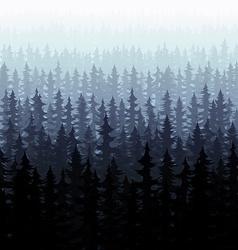 Nature forest landscape pine fir vector image