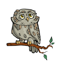 owl friendly cute forest animal cartoon vector image