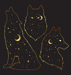Set wolf silhouettes with crescent moon and vector