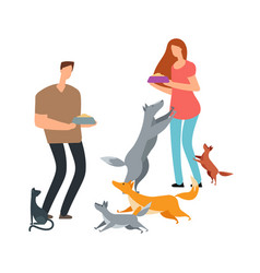 volunteers and homeless dogs and cat vector image