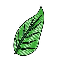 color blurred stripe image green leaf with vector image vector image