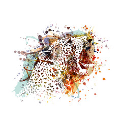 color of a leopard head vector image