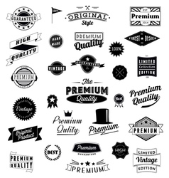 Set of Vintage styled design logo icons and banner vector image