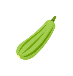Bottle gourd icon flat style vector