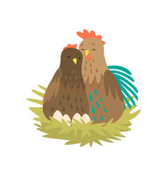 cock and hen sitting in nest with eggs isolated on vector image