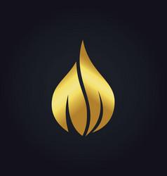 gold droplet leaf beauty logo vector image