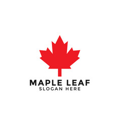 red maple leaf logo icon design template vector image