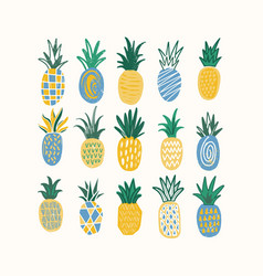 set of stylized pineapples of various texture vector image