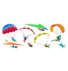 skydivers skydiving adventure people jump vector image