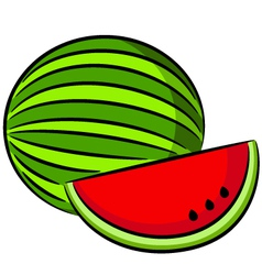 Water-melon vector