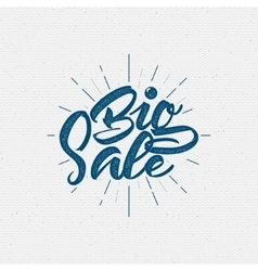 Big Sale insignia and labels for any use vector image vector image