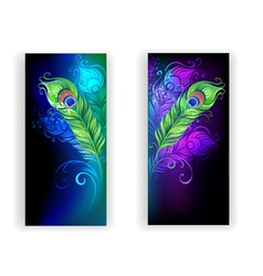Two Banners with Peacock Feathers vector image vector image