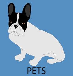 Pet dog icon flat style vector image