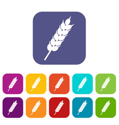 Dried wheat ear icons set flat vector
