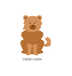 card dog breeds with chow-chow furish puppy vector image