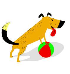 Playful cartoon dog with ball cheerful pet vector