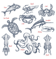 Sea animal isolated sketch set of seafood and fish vector