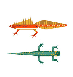 Swimming newt salamander icons in flat design vector