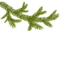 Symbol of the new year a green branch of spruce vector