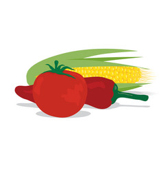 tomato corn and peppers vector image