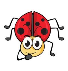 a ladybug vector image vector image
