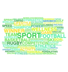 Kinds of sport vector image