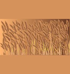 Crop field vector