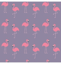 Flamingo set Seamless Pattern Exotic tropical bird vector