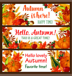 hello autumn banner set of fall nature season vector image