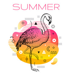hello summer poster with hand drawn flamingo bird vector image