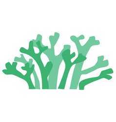 seaweed vector image