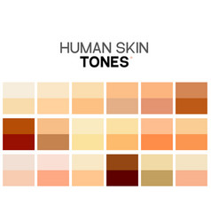 Skin tone color chart human skin texture color vector