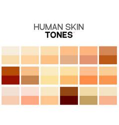 Skin tone color chart human texture color vector