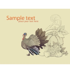 Thanksgiving turkey and cornucopia vector