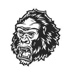 Vintage concept angry gorilla head vector