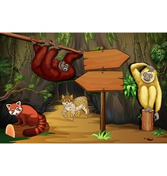 Wild animals in cave vector