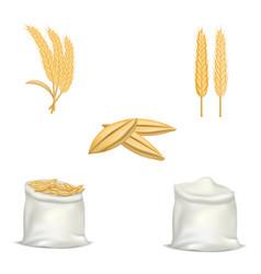Barley wheat hops mockup set realistic style vector