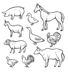 Farm animal drawing set domestic and agriculture vector