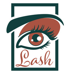 Lash extension and professional care eyelashes vector