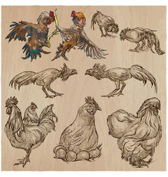 Poultry - an hand drawn pack freehand sketching vector