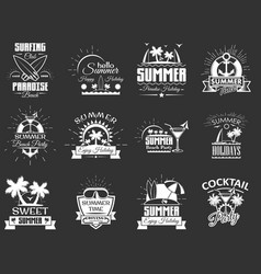 set of vintage summertime labels emblems vector image