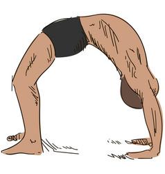 yoga man in dhanurasana bridge stand vector image