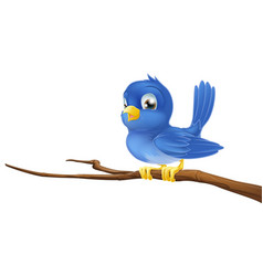 bluebird on tree branch vector image vector image